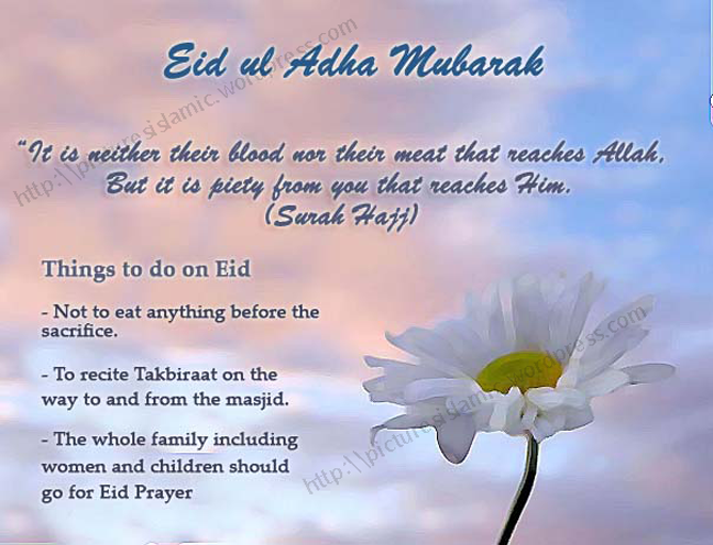Eid-ul-Adha Mubarak  Islamic Pictures Blog